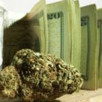 Still want to ride the cannabis boom? Six bets to play the green gold rush