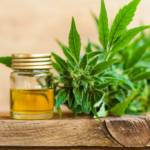 What is CBD? A look into the health benefits of this growing industry