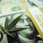 This Week in Cannabis Investing, July 5
