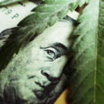 This Week In Cannabis Investing September 13th