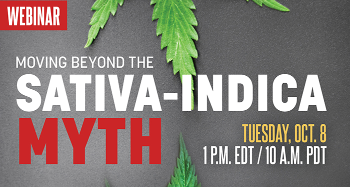 sativa indica cannabis webinar business
